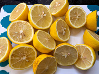 Lemon_Halves_IMG_2381